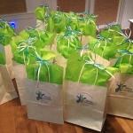 blue-giraffe-30a-swf-bags