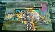 S Lierly Sea Turtle 2