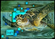 S Lierly Sea Turtle