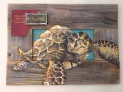 Sara Lierly Sea Turtle - Taylor Collection.jpg