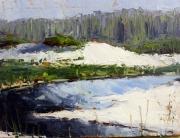 Grayton Beach State Park - Coastal Lake Outflow by Aaron Sutton