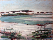 grayton-beach-state-park-2013